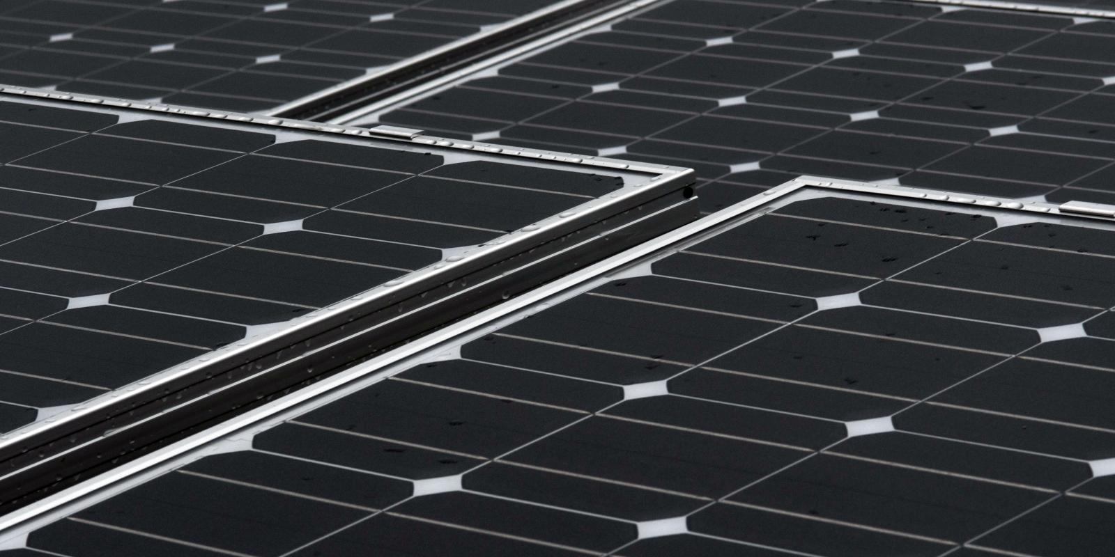 Photograph: An array of crystalline silicon photovoltaic panels under-test at the Sheffield Solar Farm.